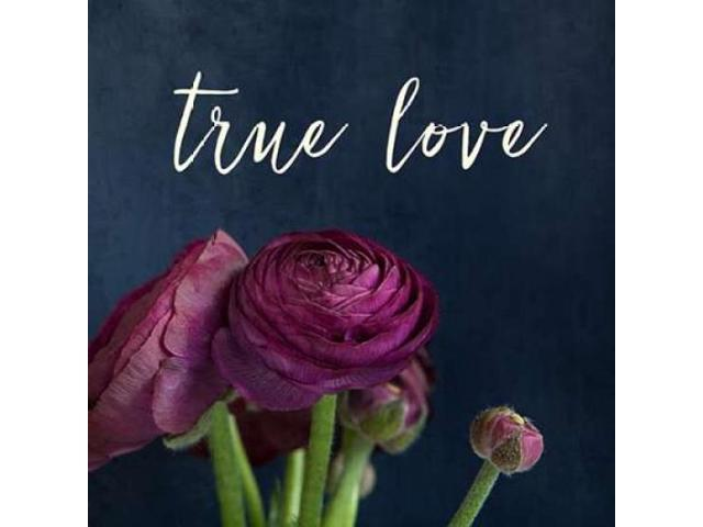True Love Poster Print by Susannah Tucker Photography (24 x 24)