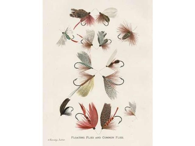 Fishing Flies II Poster Print by Gwendolyn Babbitt (22 x 28)