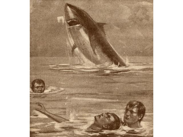 19Th Century Illustration Of Man Rescuing Swimmer With Shark In Background Poster Print (13 x 15)