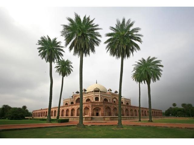 Building With Palm Trees In Foreground New DelhiIndia Poster Print (18 x 12)