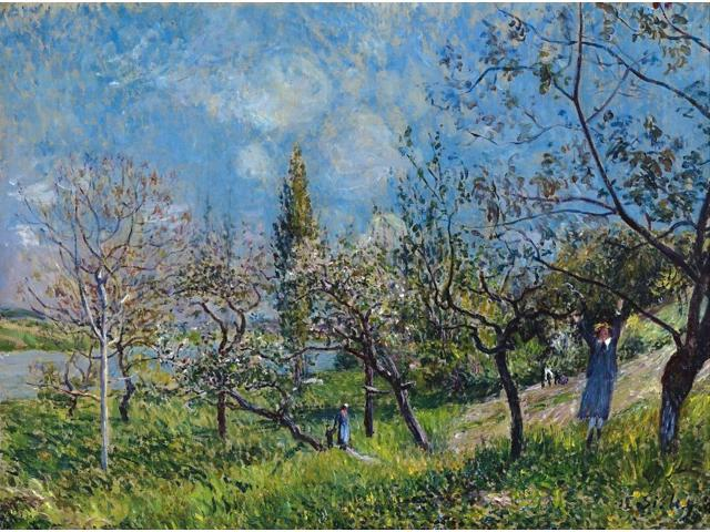 Sisley Orchard In Spring Noil On Canvas Alfred Sisley 1881 Poster Print by  (18 x 24)