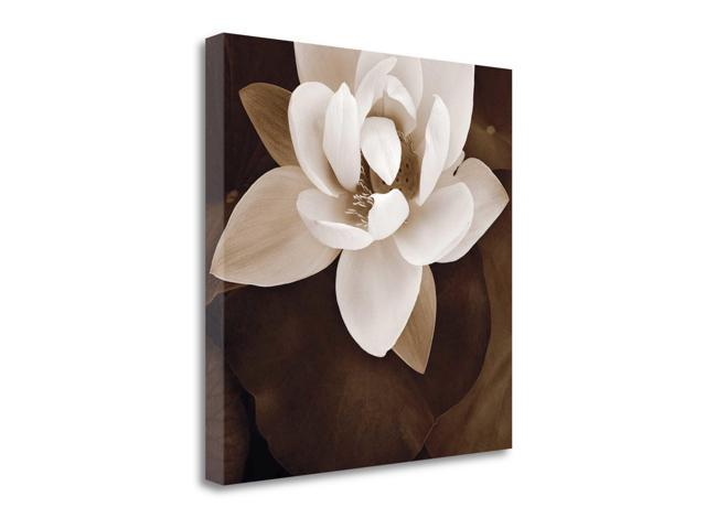 Amazon Lotus by Rebecca Swanson  Gallery Wrap Canvas Art printed on heavy museum grade canvas.