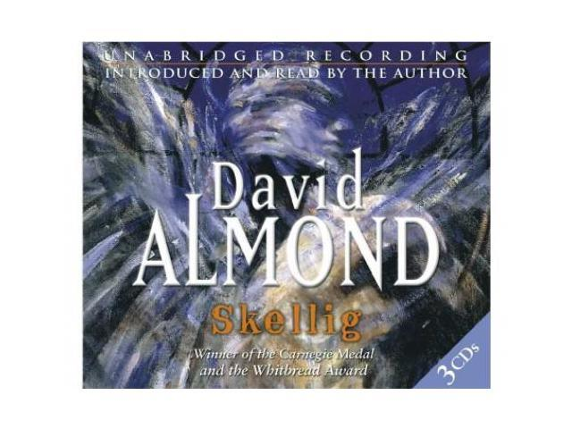 an essay on the book skellig Great ideas for essays, projects reports, and school reports on skellig by david almond part of a comprehensive study guide from bookragscom.