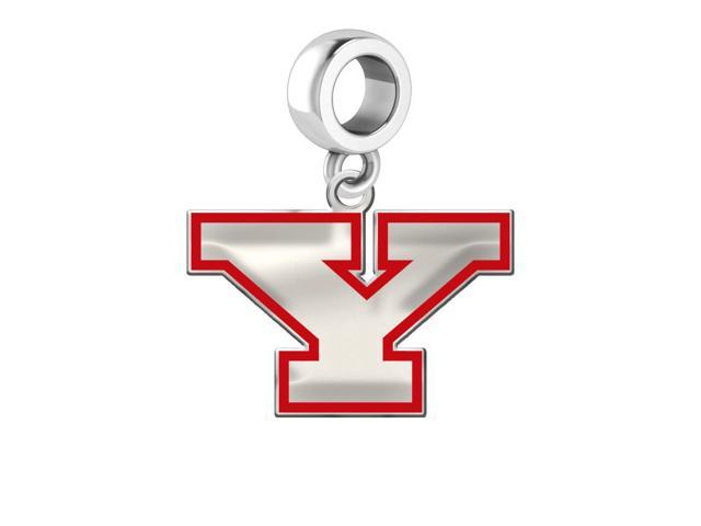 Youngstown State Penguins Silver Logo and School Color 1/2