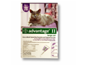BAYER 004BAY-04461685 Advantage II for Large Cats 9 plus  lbs, - Purple-  4 Months