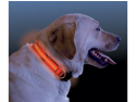 NiteIze NI-NND-03-19M Nite Dawg - LED Dog Collar - MEDIUM  13-18 Inch - Orange