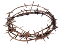 WMU 552873 4 Yards Long Crown of Thorns - Brown