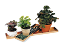 """Achla TRY-C29 29"""" Long Tray - Stainless Steel"""