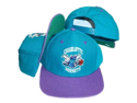 Charlotte Hornets Teal/Purple Snapback Adjustable Plastic Snap Back Hat / Cap