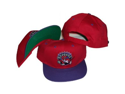 Toronto Raptors Red/Purple Two Tone Snapback Adjustable Hat / Cap