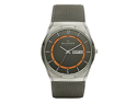 Skagen Aktiv Grey Mesh Titanium Men's watch #SKW6007