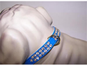 Heidi Vinyl Dog Collar 12in Blue 94P
