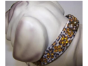 Sahara Jeweled 3/4in Dog Collar 132 Jaguar 12in
