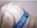 Arizon Vinyl Dog Collar 14in Blue 47P