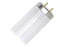 General 22085 - F20T12/DW/22 Straight T12 Fluorescent Tube Light Bulb