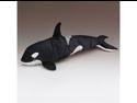 "Orca Killer Whale 16"" by Wild Life Artist"