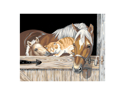 "Paint By Number Kit 20""X16""-Stable Pals"