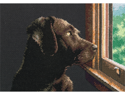 """Gold Petite Pondering Pup Counted Cross Stitch Kit-7""""X5"""""""