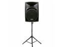 """Podium Pro Studio ABS Speaker 10"""" Two Way Pro Audio Monitor and Stand DJ Set for PA Home or Karaoke PP10101SET1"""