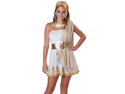 Teen Greek Goddess Aphrodite Halloween Costume