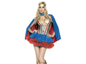 Sexy Adult Wonder Woman Corset Superhero Halloween Costume