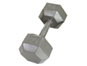USA Sports Individual 20lb Cast Iron Hex Dumbbell by Troy Barbell