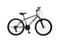 "Alton ""TYPE X"" Mountain Bike/Rough Road Shimano 21-Speed Hi-Ten Steel MTB Frame"