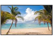 "NEC V463-AVT 46"" LED-Backlit Commercial-Grade Display w/ AV Inputs & Integrated Digital Tuner"