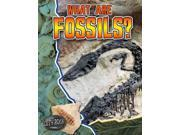 What Are Fossils? Let's Rock!
