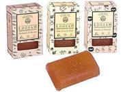 Soap-Loofah Exfoliating, Aloe Vera & Kiwi - Earth Therapeutics - 4 oz - Bar Soap