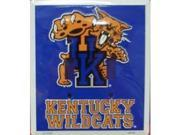 Kentucky Wildcats Light Switch Covers (double) Plates LS12003