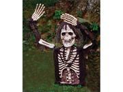 Costumes For All Occasions Fw8489Ts Skeleton Lite Up 21 Inch Gb