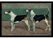 Buyenlarge 04383-0P2030 Two Fox Hounds 20x30 poster