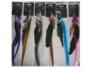 Bulk Buys Feather Hair Extensions - Case of 144