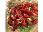 Lobster Gram JTL2J JUST THE LOBSTERS WITH 2 LB LOBSTERS