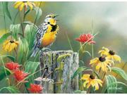 Outset Media Games Meadowlark Morning 1000 piece Puzzle
