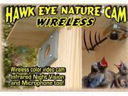 Birdhouse Spy Cam Hawk-Eye Wireless Spy Camera