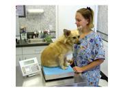 Complete Medical VET50 Digital Veterinary Scale