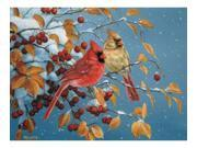 Outset Media Games OM52072 Winter Cardinals 500 piece Puzzle