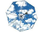Haas-Jordan 42 Inch Sky Personal Pop Up Umbrella