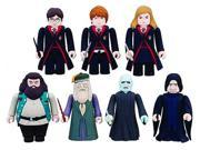 Harry Potter & The Deathly Hallows Kubrick Figure Blind Random Package
