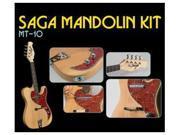 Custom-Built MT-10J Electric Mandolin Kit from SAGA