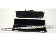 Vento 895RBCD Flute Sterling Silver Head Joint & Body