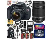 Canon EOS Rebel T5 1200D 18-55 + 55-250 Lens SLR Digital Camera (Advanced Bundle Kit) 9126B003 (64GB SD Card + SD Reader + SLR Backpack + 3X Battery + Charger + Bower Flash + Pro Tripod + Filter Kit +