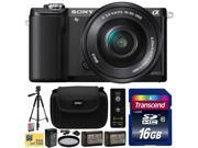 Sony Alpha A5000 20.1 MP Interchangeable Mirrorless Lens Camera with 16-50mm OSS Lens ILCE5000L (Black) with Beginner Accessories Bundle Kit includes 16GB Class 10 SDHC Memory Card + x2 Replacement (1