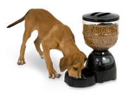 Petmate Infinity Programmable Feeder Portion Control 10lb