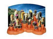Odd Pods - Wild West Cactus Round Up