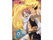 Fairy Tail: Natsu Happy Fired Up Wall Scroll ~33x44 inches Fairy Tail