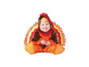 Lil' Gobbler Turkey Costume Infant