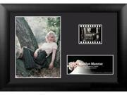 Marilyn Monroe (S2) MGC Film Cell